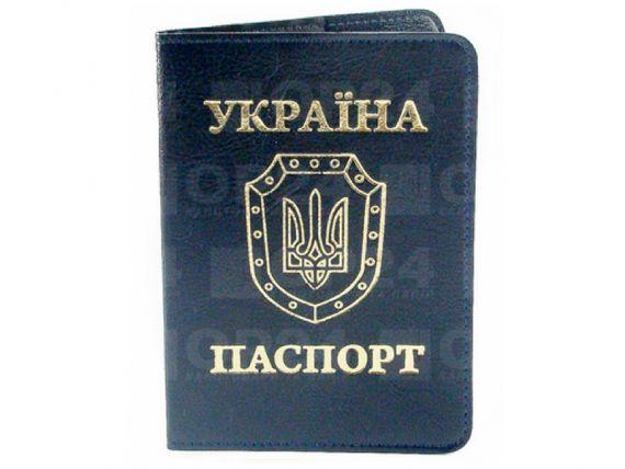 Обкладинка для паспорта Sarif синя Бріск
