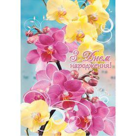 Листівка А-4 подвійна З Днем народження №2660 Квіти ФП